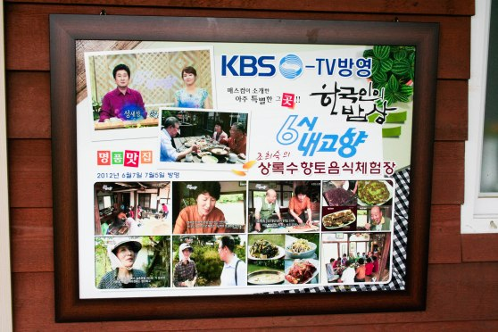 Looks like 상록수 (Sanroksu) had been featured on TV a few times