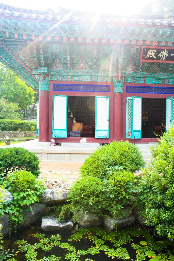 InvestKorea - Trip #3 (50 of 62)