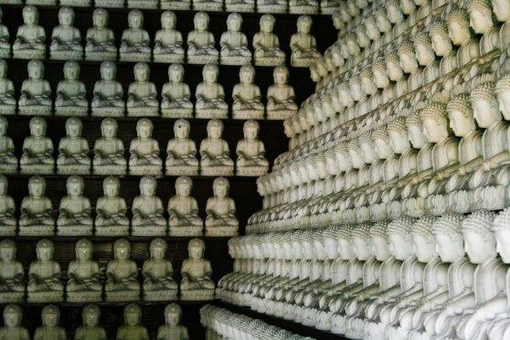 So many Buddhas!