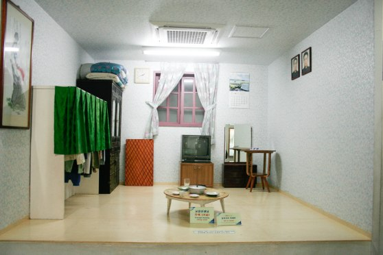 A typical/well-off North Korean home (notice the TV set, not something a lot of poor North Koreans can afford)