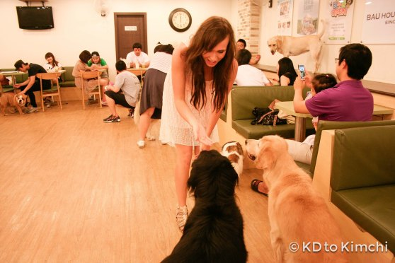 Me feeding some of the dogs!