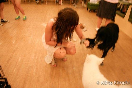 BAU HAUS - Dog Cafe (14 of 37)