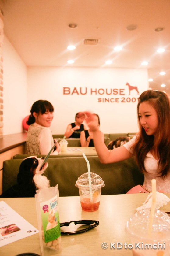 BAU HAUS - Dog Cafe (17 of 37)
