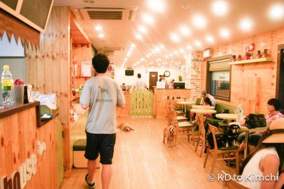 BAU HAUS - Dog Cafe (36 of 37)